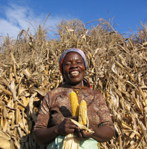 A lady stands infront of maize